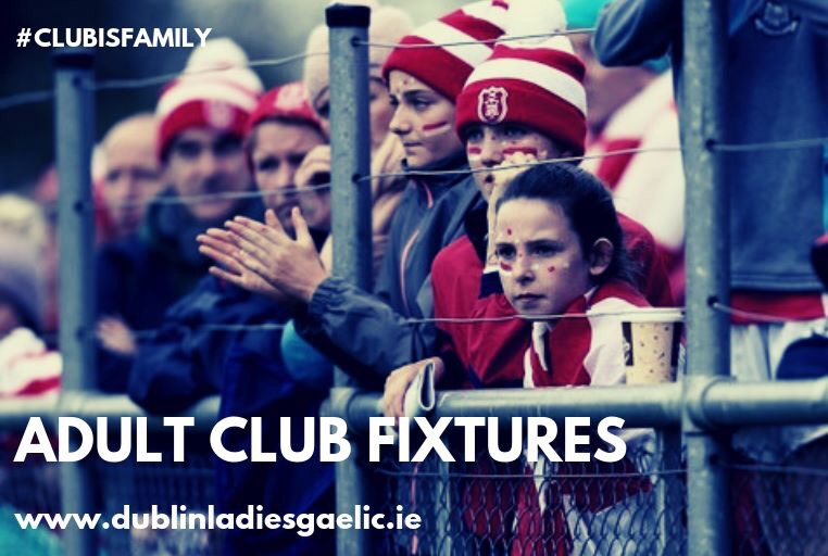 Image of supporters looking out through a fence to advertise the Dublin LGFA Adult Club championship fixtures